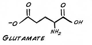 glutamate receptor gene, female depression