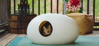 thats a litter box cat litter box