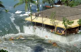 tsunami in sri lanka essay examples essay on tsunami key recommendations to write a amazing