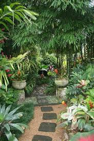 Small Picture Best 20 Tropical gardens ideas on Pinterest Tropical garden