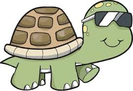 Image result for animated turtle