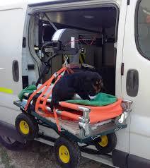 """Résultat de recherche d'images pour """"Ambulance animaux"""""""