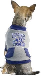 "<b>Толстовка для собак Triol</b> Disney ""Mickey College"", цвет: серый ..."