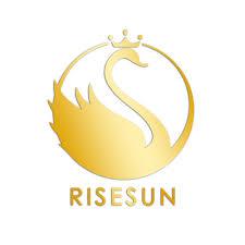Risesun <b>Professional</b> Lcd Display High <b>Speed 35000rpm</b> 65w ...