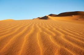 <b>desert</b> | Definition, Climate, Animals, Plants, & Types | Britannica