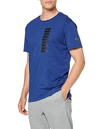 Puma Energy <b>Triblend Graphic Tee</b> Sodalite Blu: Amazon.in ...