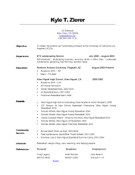 samples of objectives for resumes  tomorrowworld cosamples