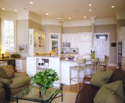 green kitchen cabinets couchableco: most popular kitchen paint colors traditional kitchen idea in other with raised panel cabinets