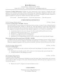 examples of professional resumes writing resume sample writing examples of professional resumes for job description