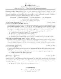 resume professional resume professional makemoney alex tk