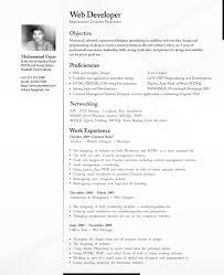 cv professional by dzkanch on cv professional by dzkanch cv professional by dzkanch