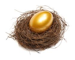 Image result for PIctures of nest eggs