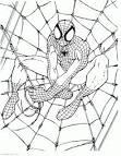 Раскраска паука распечатать бесплатно