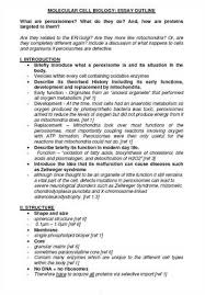 page essay format   essay topics page essay outline help me craft a winning paper