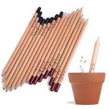Preferred 50% OFF <b>8PCS idea germination pencil</b> set grow pencil ...