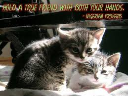Best Friend Quotes And Sayings For Facebook. QuotesGram