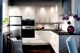 Exellent Ikea Modern Kitchen Cabinets Pretty 2 Photo Of Throughout Simple Ideas