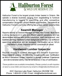 timberthe working forest sawmill manager hardwood inspector haliburton forest haliburton on