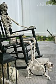 ideas outdoor halloween pinterest decorations: nob hill outdoor halloween skeleton display ideas halloween decor skeletons halloween