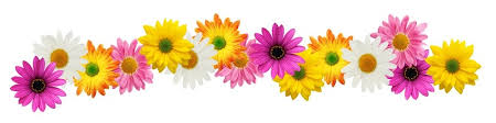 Image result for clipart flower borders
