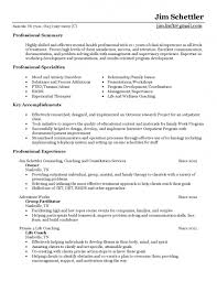 resume template how to make an professional cv gallery how to make an professional resume cv template administrator how to create a professional resume