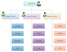 types of organizational charts for different scenarios   creately blogso in summary  when deciding the suitable organizational chart  it is important to have an understanding of the current organizational structure of your