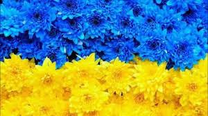 За минувшие сутки на Донбассе ликвидирован 1 оккупант, ранены 6, - Минобороны Украины - Цензор.НЕТ 8261