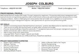 business analyst cv samplebusiness analyst cv sample