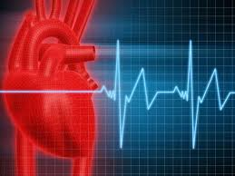 Heart-Healthy Lifestyle Also Reduces Cancer Risk