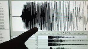 Risultati immagini per terremoto sismogramma