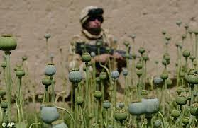 Image result for heroin in afghanistan