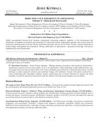 Example Sales Executive Resume Free Sample for Executive Resume ... ... Example Information Technology Operations Executive Resume Sample in Executive Resume Examples ...