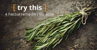 <b>Herbs for Acne</b>: Know the Facts