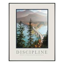 discipline bridge motivational poster motivational posters