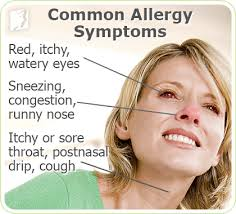 Image result for What are Allergies and Its Symptoms