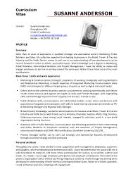 cv susanne andersson english
