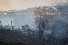Fogo atingiu casas na Calheta, Madeira