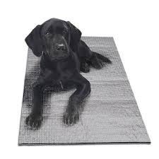 <b>Dog Bed</b> Covers & <b>Accessories</b> You'll Love in 2021 | Wayfair