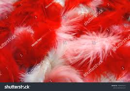 <b>Red Pink White Fluffy</b> Feathers Background Stock Photo (Edit Now ...