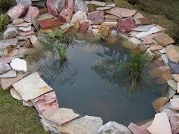 diy patio pond: garden pond garden pond x garden pond