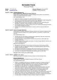 government resume template resume examples sample resume for government resume template resume examples sample resume for international relations resume template international student resume template international