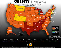 essay about obesity in usa   order essay