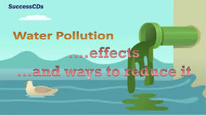 water pollution effects and the ways to reduce it water pollution effects and the ways to reduce it