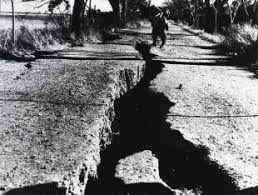 「1944年東南海地震(昭和東南海地震)」の画像検索結果