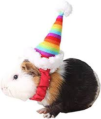 Mummumi Small Pet Holiday and Christmas Hat ... - Amazon.com