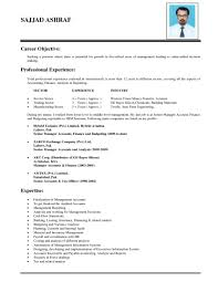 resume goals examples resume objective statement examples waitress objective resume smlf sample resume basic resume objective resume objective samples for college students resume for