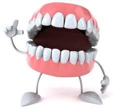 Znalezione obrazy dla zapytania denture
