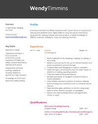 cleaner cv example   hashtag cvcleaner cv example and template