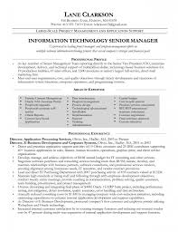 resume cv format for project manager project manager resume cv format for project manager project manager resume samples pertaining to project manager resume