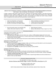 real estate s professional resume sample eager it